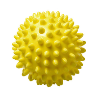 Wellness-Ball Igel