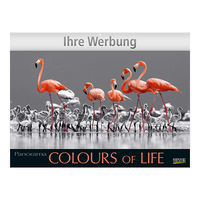 Bildkalender Colours of Life